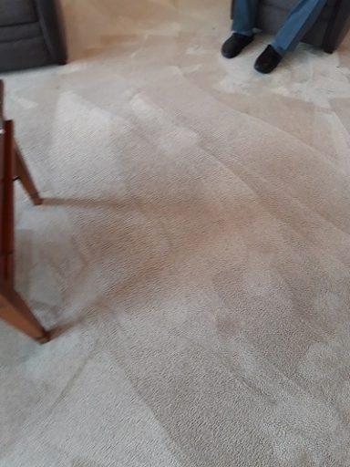 tapijt laten reinigen heeft altijd nut